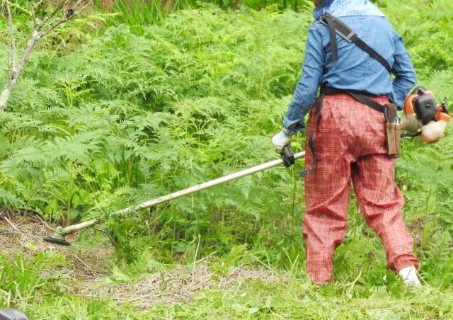 上越市で草刈りにかかる料金相場は?追加料金や業者選びのコツまで解説